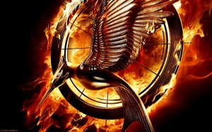 Catching-Fire-Wallpapers-catching-fire-movie-33312391-1280-800